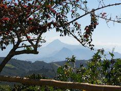 Suroeste de Antioquia, Colombia. Cerro Tusa y Cerro Bravo