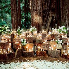 Enchanting & romantic woodlands wedding theme with gold dipped candles & white flowers styling ✨ #wedding #weddingday #weddingstyle #weddingstyling #gardenwedding #woodlands #weddingideas #weddinginspo #weddinginspiration #candles #goldcandles #whiteflowers #rusticchic #rusticcharm #rusticwedding #outdoorwedding #duskwedding #bride #bridetobe #engaged #nightwedding