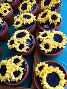 Sunflower Oreo cupcakes in flower pots