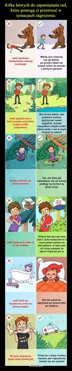 Trendy w kategorii humor w tym tygodniu - WP Poczta Wtf Funny, Funny Cute, Funny Memes, Hilarious, Weekend Humor, Everything And Nothing, Always Learning, Just Smile, Man Humor