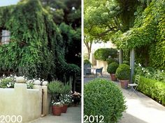 Myra Hoefer California House - Myra Hoefer Design - House Beautiful