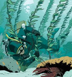 "Another case study in our Dive Training series ""Lessons For Life"": Panicking while diving in kelp searching for lobster leads to a fatal entanglement for a diver."