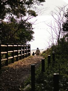 広島市の元宇品公園に行ってきた。瀬戸内海らしい風景。