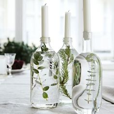 Handmade Home Decor Beautiful table decoration. Decorate glass bottles with aquatic plants. Easy Home Decor, Handmade Home Decor, Cheap Home Decor, Winter Home Decor, Classic Home Decor, Fall Decor, Do It Yourself Decoration, Deco Floral, Flower Arrangements