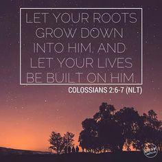 Be rooted and grounded in Christ our Lord