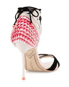 Resultado de imagen de pink flamingo mallorca