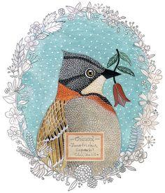Such pretty bird images.