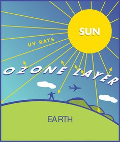 A layer of ozone gas in the atmosphere that screens out much of the sun's UV (ultraviolet) rays.