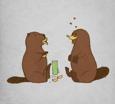 Platypus (with Pringles)  :)