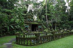 Paronella Park Google Images, To Go, Spaces, Park, House Styles, Pictures, Home Decor, Photos, Decoration Home