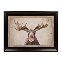 Big Moose Framed Art Print | Kirklands