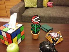 """ein neues Pflänzchen zog ein (der wollige Kirby im Hintergrund ist von """"Unikate aus Wolle"""")"""