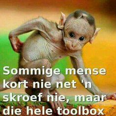 Some people don't just have a screw loose, they are missing a whole toolbox Afrikaanse Quotes, Baby Shower Cakes, Moving Forward, Tool Box, Jokes, Comics, Sayings, Funny, Animals