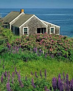 My dream home.Cottage by the Sea, Monhegan Island, Maine @ Ronald Wilson Photography Cozy Cottage, Cottage Living, Coastal Cottage, Coastal Homes, Cottage Homes, Coastal Living, Maine Cottage, Cape Cod Cottage, Living Room