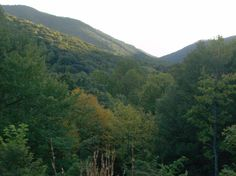 Rock Castle Gorge. Virginia Mountains, Blue Ridge Parkway, Castle, Hiking, Camping, River, Spaces, Rock, Outdoor