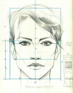 Las proporciones de la cara