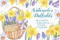 Watercolor Daffodils by Sunny Illustrations on @creativemarket
