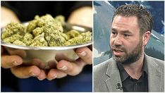 Why Cannabis Shouldnt Be Considered a Gateway Drug: Calgary Professor Debunks Marijuana Myths