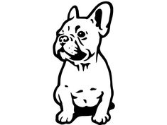 The major breeds of bulldogs are English bulldog, American bulldog, and French bulldog. The bulldog has a broad shoulder which matches with the head. Tattoo Bulldog, French Bulldog Tattoo, French Bulldog Puppies, French Bulldogs, Wall Stickers Cars, Car Bumper Stickers, Vinyl Decals, Car Decal, Bulldogge Tattoo