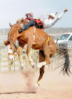 White Cone bareback rider Tsosie pursues his rodeo potential - Navajo Times Cowboy Horse, Cowboy Art, Cowboy And Cowgirl, Bareback Riding, Horse Riding Quotes, Bucking Bulls, Rodeo Events, Rodeo Time, Rodeo Cowboys