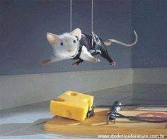 DEDETIZADORA TSERV : O que fazer para afastar os ratos . tserv.com.br