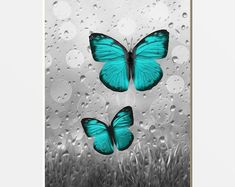 Teal Gray Lily Flower Decor Teal Wall Art Teal Floral Home Canvas Poster, Canvas Wall Art, Wall Art Prints, Grey Home Decor, Home Decor Wall Art, Teal Wall Art, Butterfly Wall Decor, Butterfly Wallpaper, Art Mat