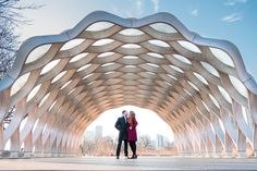 Rockford Wedding Photography by Brian Adams; Lincoln Park Honeycomb; Engagement pictures winter in Chicago