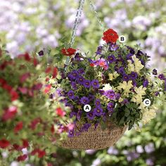 "How to create your own fabulous hanging baskets. BHG has a ""plant-by-numbers"" guide to make it so easy."