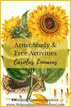 Artist Study and Free Activities: Carolus Linnaeus from www.HelpingHandHomeschool.com #art #arthistory #unitstudy #homeschool #STEM