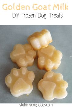 Golden Goat Milk treats are a tasty and nourishing snack for your dogs. Easy to make and full of healthy, wholesome ingredients, your pups will thank you for these easy DIY frozen dog treats. Pumpkin Dog Treats, Diy Dog Treats, Homemade Dog Treats, Dog Treat Recipes, Healthy Dog Treats, Dog Food Recipes, Golden Goat, Goat Milk Recipes, Frozen Dog Treats