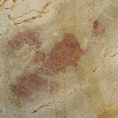 Giallo Antico full slab -- Arizona Tile