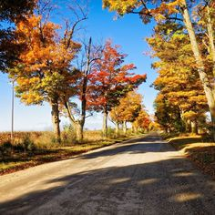 Fall  #photography #photo #scenic #beautiful #landscape #sunrise #Michigan #puremichigan #outdoors #travel #nature #fall #road #Howell #country #backroads #driving