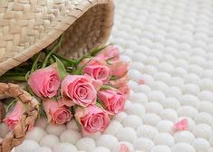 Dieser Shirisha Teppich verkörpert die Reinheit und Klarheit. Unser Kunde ist mit dem Teppich sehr verliebt und die Rosen verstärken dieses Gefühl auch!  Shirisha Teppich jetzt auf http://www.sukhi.de/rund-shirisha-filzkugelteppiche.html
