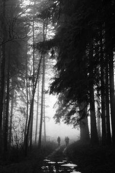 Film Photography Submission By: Merette Kuijt        Nikon FM        Ilford Delta film