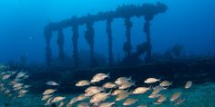 Best Snorkeling: RMS Rhone, British Virgin Islands