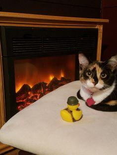 My little girl Papaya and her duckie. #Cute