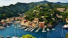 Love in Portofino Cinque Terre, Dolores Park, River, Outdoor, Outdoors, Outdoor Games, The Great Outdoors, Rivers
