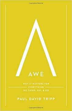 Awe: Why It Matters for Everything We Think, Say, and Do: Paul David Tripp: 9781433547072: AmazonSmile: Books
