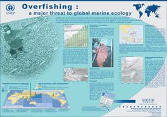 http://www.grid.unep.ch/products/5_Posters/sk_overfishingb.gif