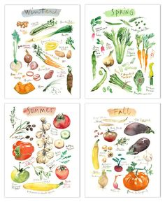 """Set of four vegetable prints - Four seasons Archival giclee reproduction prints from my watercolor illustrations. This seasonal fruits set is printed on fine art """" BFK Rives """" paper, smooth texture, a"""