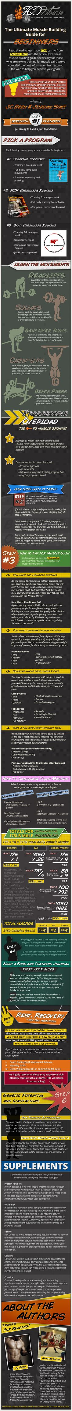 The Ultimate Muscle Building Guide For Beginners (Infographic)
