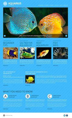 Exotic Aquarium – Fish Responsive WordPress Design