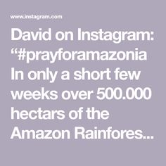 """David on Instagram: """"#prayforamazonia In only a short few weeks over 500.000 hectars of the Amazon Rainforest are ablaze and the media is not merely covering it…"""" Amazon Rainforest, David, Earth, Cover, Instagram, Blankets, Mother Goddess, World"""
