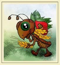 Resultado de imagen para fotos de hormigas graciosas