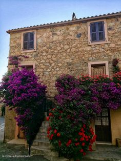 Corsica, Beau Site, Château Fort, Sainte Marie, Le Village, Beaux Villages, Mansions, House Styles, Plants