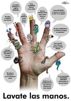 Los microbios se esconden en nuestras manos.