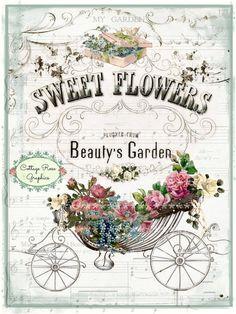 Jardín descargar rosas imagen de la belleza por CottageRoseGraphics
