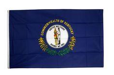 8+ idées de USA/ Maison des Drapeaux  drapeau usa, drapeau, pavillon