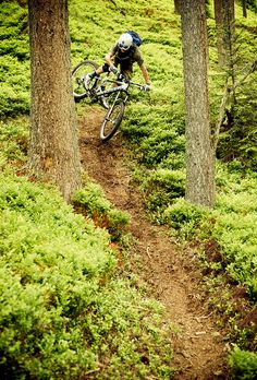 Shop for the Hottest Cycling Deal! Try out our amazing Bicycle Search Tool that searches all the best Bicycle Sport Shops and brings the back all the best bargain deals from around the web. Downhill Bike, Mtb Bike, Cycling Bikes, Road Bikes, Bmx, Motocross, Mtb Cycles, Mtb Trails, Bike Photo