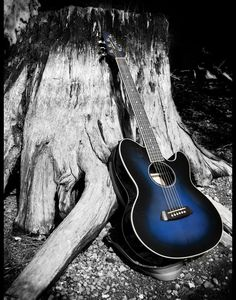 Guitar in colour against b/w tree